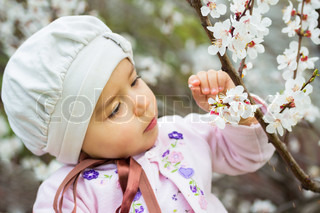 little girl in the cherry blossoming tree