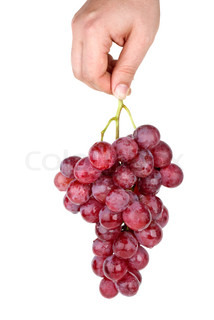 Hand holding bunch of pink grapes