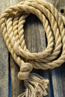 rope coiled on the old board