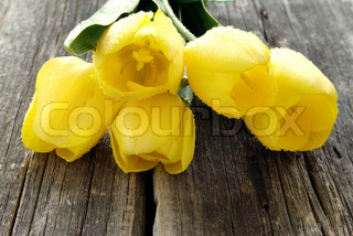 bouquet of yellow tulips on an old blackboard