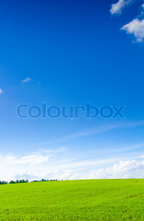 Country Background Outdoor