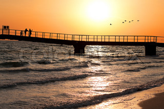 Sunset, Bridge on the sea shore, a flock of birds flying away