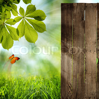 Just open your doors! abstract summer backgrounds