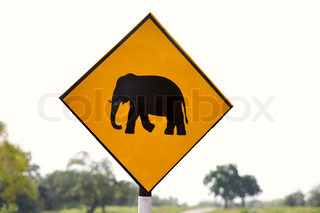Yellow Elephant wanring sign on the road in Sri Lanka