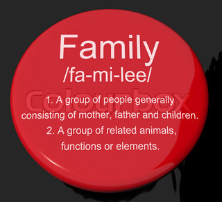 description of my father in the family Transcript of my family description my family description my mom  in my whole family i have 3 aunts and 1 uncle, also my 9 cousins are very funny and i can trust them at all times my dad my father's name is julio paez, he is from barranquila and lives in that city, my dad is a police lieutenant and though we live far we have a very good.