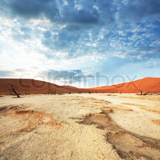 Namib desert on sunrise