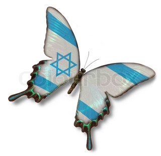 Israel flag on butterfly isolated on white