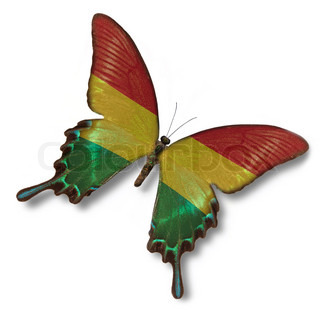Bolivia flag on butterfly