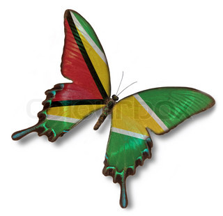 Gyana flag on butterfly