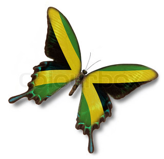 Jamaica flag on butterfly isolated on white