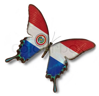 Paraguay flag on butterfly isolated oh white
