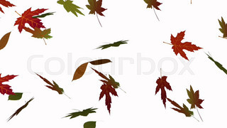 Animation of the autumn leaves falling