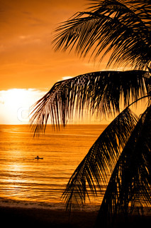 Sunset by a tropical ocean