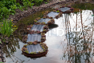 modern solar cells in garden used for the energy delivering for the water pump