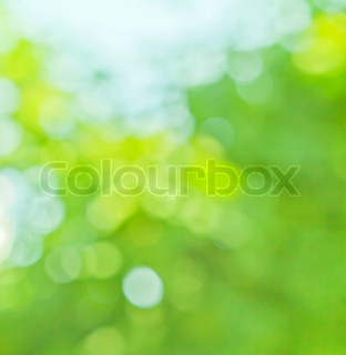 spring blurred background in green and blue colors