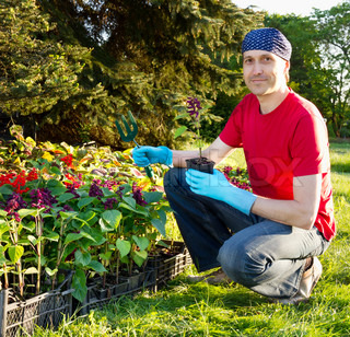 Happy smiling young man gardening - planting flowers