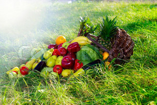 Composition with variety of fruits