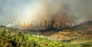 Billede af 'ildebrand, ild, brand'