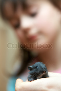 mouse in a hand of the girl