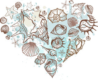 Heart of the shells Hand drawn illustration
