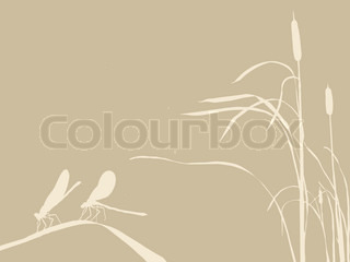 two dragonflies on brown background