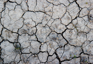 The dry gray earth with cracks texture