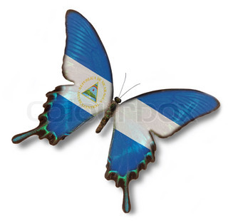 Nicaragua flag on butterfly isolated on white
