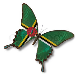 Dominica flag on butterfly isolated on white
