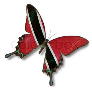 Trinidad and Tobago flag on butterfly