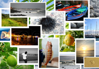 Sommer Urlaub collage