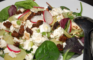 Mixed leafy salad with cheese