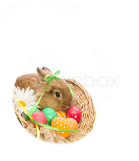 Easter Bunny in a basket with eggs and ribbons,