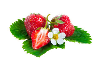 Strawberries on leaves with flower