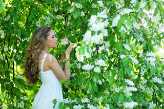 Young attractive girl smelling bird-cherry flowers