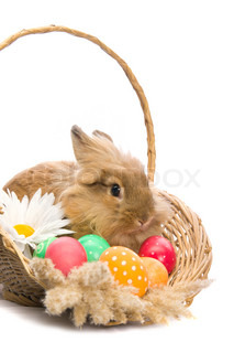 festive Easter Bunny is sitting in a basket with colored eggs