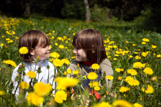 little children on dandelion s meadow