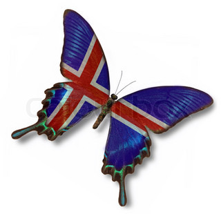 Iceland flag on butterfly isolated on white
