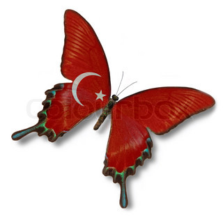 Turkish flag on butterfly isolated on white