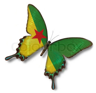 Guyane flag on butterfly isolated on white