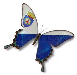 Bonaire flag on butterfly