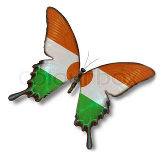 Niger flag on butterfly isolated on white
