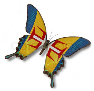 Madeira flag on butterfly