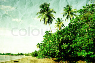 Tropical grunge landscape with palm trees