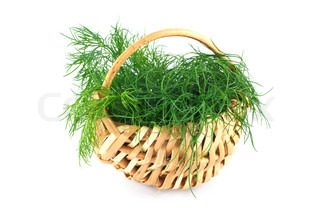 dill in a basket isolated on white