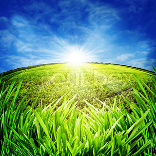 Sunny morning on the meadow Rural abstract backgrounds
