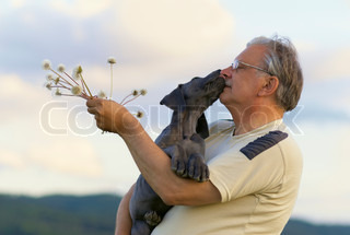 Old man with a puppy of Great dane