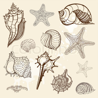 Sea collection Hand drawn vector illustration