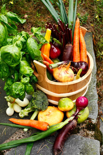 assortment of harvested vegetables outdoors in a wooden pail