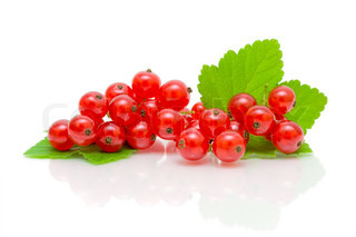 bunch of red currant on white background