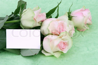 pink roses with blank love note